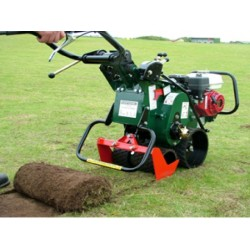 Cortatepes Groundsman TMC 46
